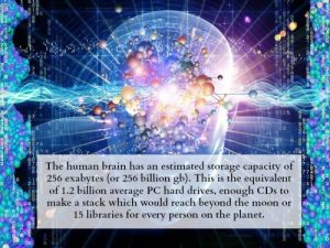 fun-science-facts-14