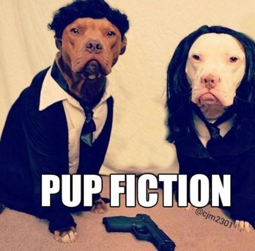 pup-fiction-500x494