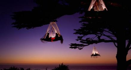 tree-camping-in-germany